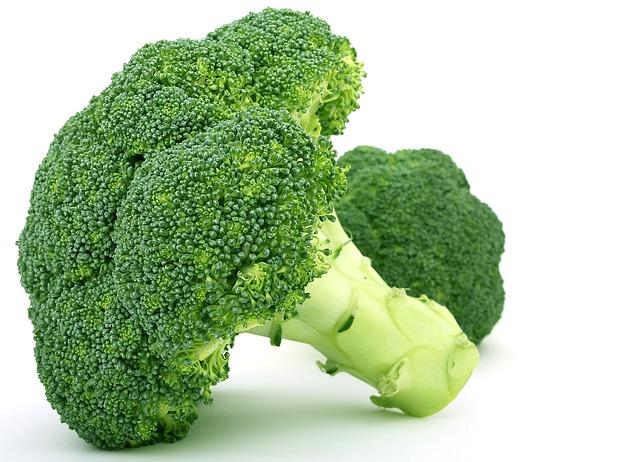 אבות המזון ובריאות